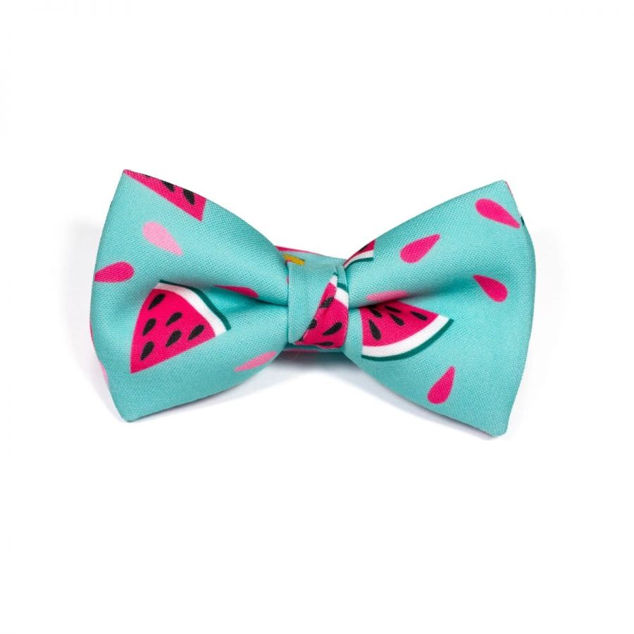 Foodie Watermelon Classic Bow Tie